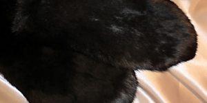 Čierne rukavičky – pár